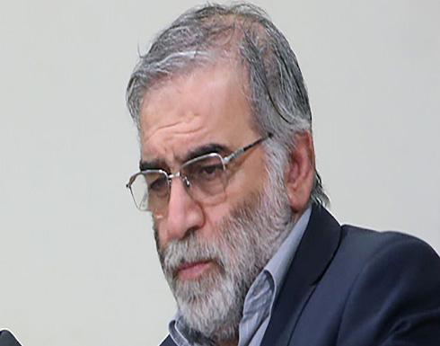 """""""خيانة الداخل"""".. تفاصيل جديدة عن مقتل عالم إيران النووي"""