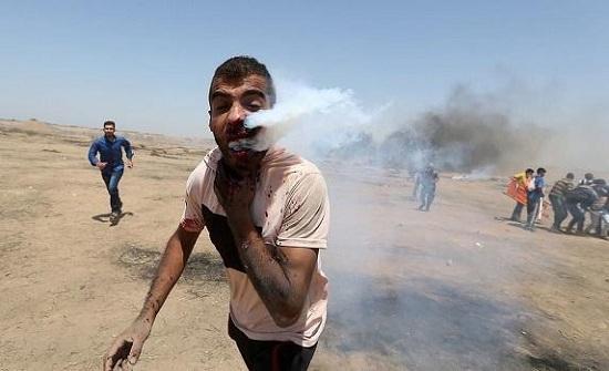 وصول هيثم أبو سبله من غزة إلى مدينة الحسين