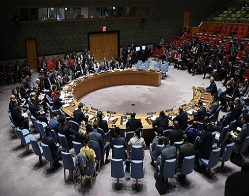 رئيس مجلس الأمن: العنف جنوب غربي سوريا ينتهك القرار الدولي 2401
