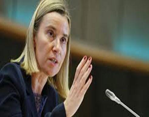 موغيريني: الاتحاد الأوروبي لن يعترف أبدا بسيادة إسرائيل على الجولان