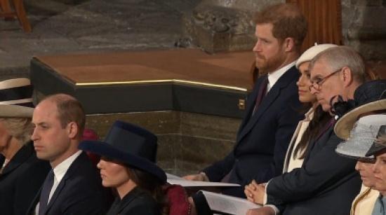 بالصور.. ليم بين يثير غيرة الأمير هاري وعيونه تفضحه