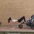بالفيديو.. سيدة تعرض أفضل طريقة لممارسة الرياضة مع الأبناء