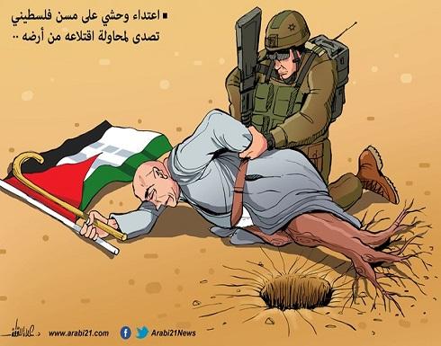 المسن الفلسطيني