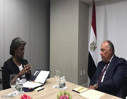 من أجل سد النهضة.. تحركات مصرية وسودانية في نيويورك