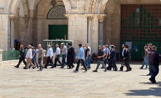 مستوطنون يقتحمون الأقصى واعتقالات جديدة بالضفة المحتلة