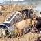 شاهد .. تحطم الطائرة العسكرية المغربية