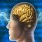 دراسة: التعلم يغير بنية الدماغ