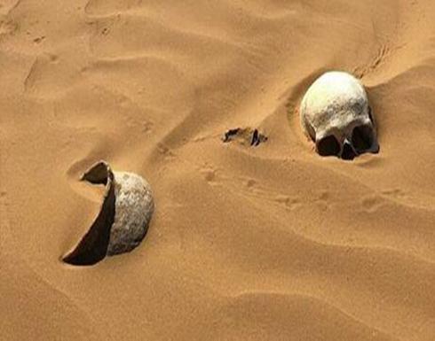 علماء الآثار يعرضون طريقة فعالة لدراسة ماضي الأوراسيين