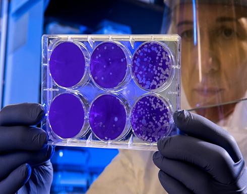 علماء يكشفون لأول مرة عن كائنات تلتهم الفيروسات