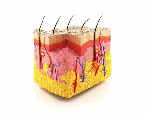 كيف تتخلص من نمو الشعر تحت الجلد في الصيف