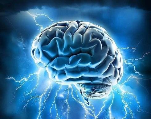 هل يرتبط الدماغ الأكبر حجما بالذكاء بالفعل؟