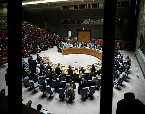 فوز البرازيل والغابون وغانا وألبانيا والإمارات بعضوية مجلس الأمن