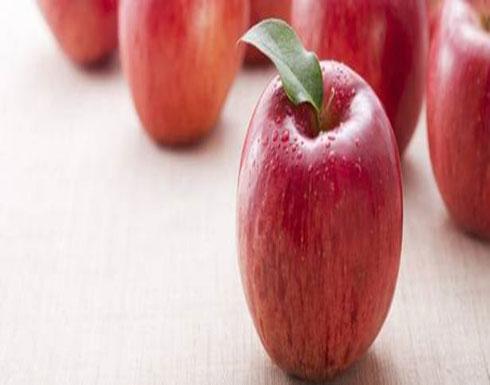 تناول التفاح قد يبطئ عملية الشيخوخة
