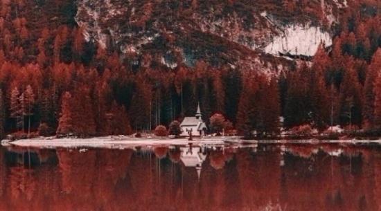 صور.. هكذا يرى المصابون بـ 'عمى الألوان' العالم!