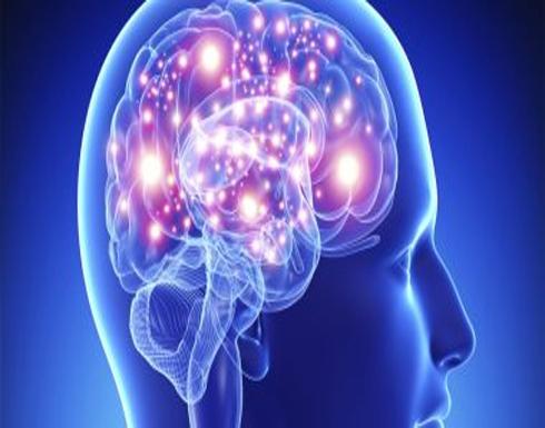 أطعمة تؤذى المخ على المدى البعيد.. أبرزها الدهون