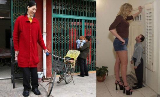 هل الطول نعمة أم نقمة.. شاهد أطول 10 نساء في العالم