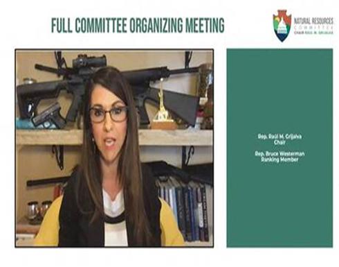 """إحدى نواب الحزب الجمهوري تستعرض أسلحة خلفها خلال اجتماع رسمي عبر """"زووم"""" (فيديو)"""