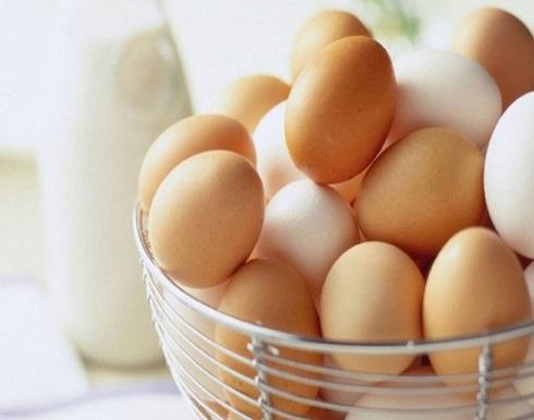 سبب وجود الدم في بيض الدجاج