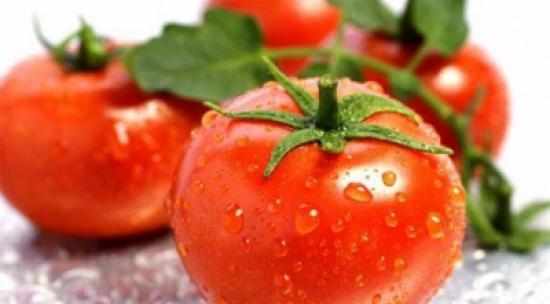 لماذا تفقد الطماطم مذاقها الأصلي عند حفظها في الثلاجة؟الطماطم