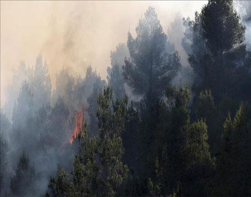 """إسرائيل تطلب مساعدات دولية لإطفاء حرائق """"جبال القدس"""""""