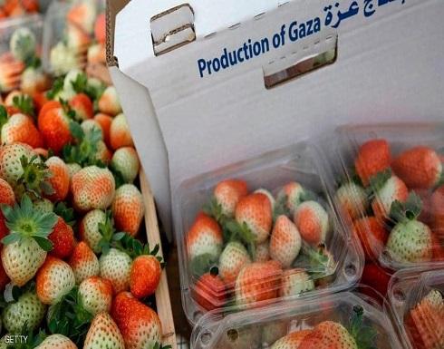 """بأمر """"إسرائيل"""" .. لا منتجات زراعية فلسطينية في الأسواق العالمية"""