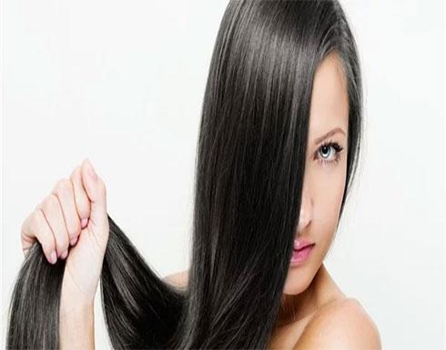 فوائد العدس للشعر.. يمنع تساقط الشعر ويعزز من نموه