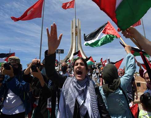 دعما لفلسطين وتنديدا بالاحتلال.. المظاهرات التضامنية تتواصل حول العالم