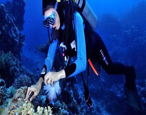العثور على علاج مرض السل في قاع البحر.. إليكم التفاصيل
