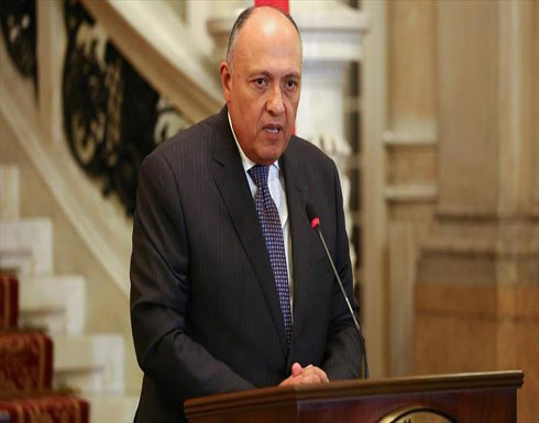شكري وسلامة يستعرضان بالقاهرة الإعداد للانتخابات في ليبيا