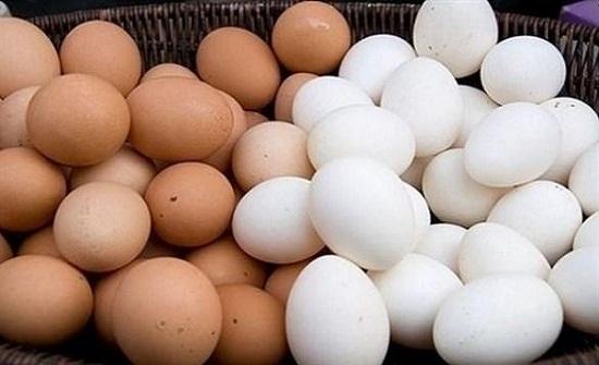 الأردن ينتج 4.5 مليون بيضة في اليوم