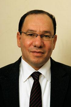 عن 11/11 في مصر