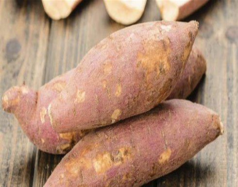 البطاطا الحلوة... طعمٌ لذيذ ودواء فعّال!