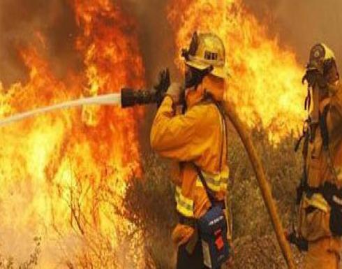 إسرائيل تكثف جهودها لإخماد حرائق الغابات وتعتقل فلسطينيين