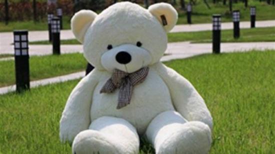 بالصور- لماذا شكّل هذا الدبّ صدمة ؟