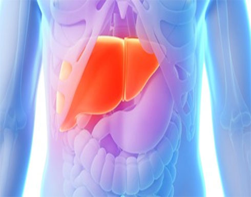 أزمة السمنة السر فى ارتفاع مرض الكبد الدهنى بين الشباب