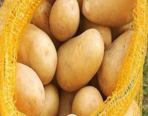 رجيم البطاطا – انتبهوا لهذه التعليمات واخسروا 4 كيلوغرامات بسرعة