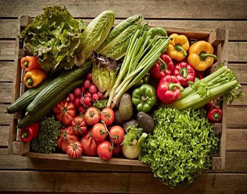 """ما هي التغذية العلاجية الصحيحة لـ """"الشرخ الشرجي والإمساك"""""""