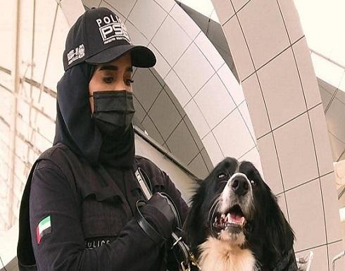 الإمارات تنجح في كشف كورونا.. بالكلاب البوليسية