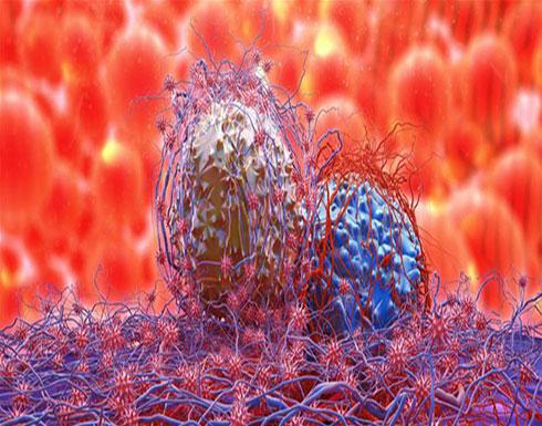 دراسة جديدة وآمال واعدة لعلاج السرطان.. ماذا عن الـPD-L1؟
