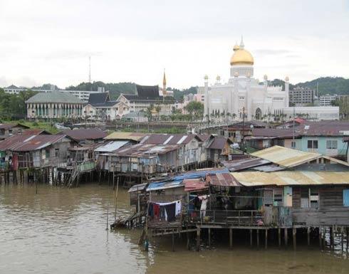 صور .. وحشٌ نهريّ ذو أنياب عملاقة يظهر في آسيا!