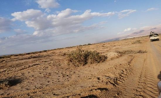 """بالصور ... """" الملكية لحماية الطبيعة """" : إعدام40  ألف شجرة في محمية فيفا"""