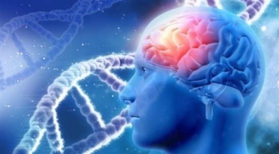 تفسير جديد لمرض الزهايمر يتهم الكالسيوم