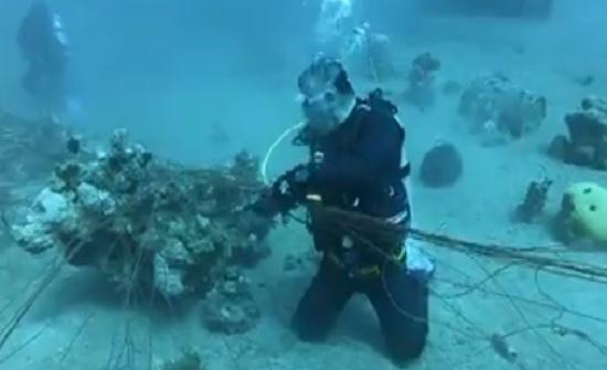 بالفيديو : الملك وولي العهد يشاركان بتنظيف قاع البحر في العقبة