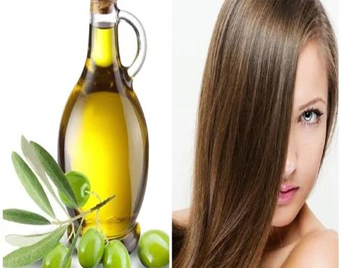 فوائد غير متوقعة لـ زيت الزيتون للعناية بـ الشعر ابرزها علاج تلف الشعر
