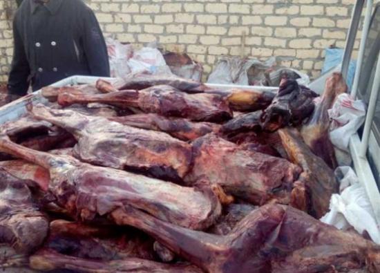 """صدمة في الجزائر .. """"مافيا"""" ذبحت عدداً كبيراً من الحمير وباعتها للمطاعم على أنّها لحوم حمراء!"""