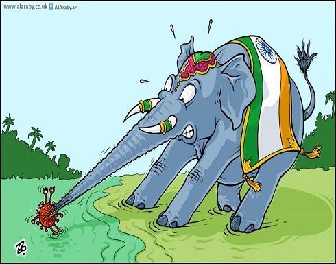 الهند والكورونا