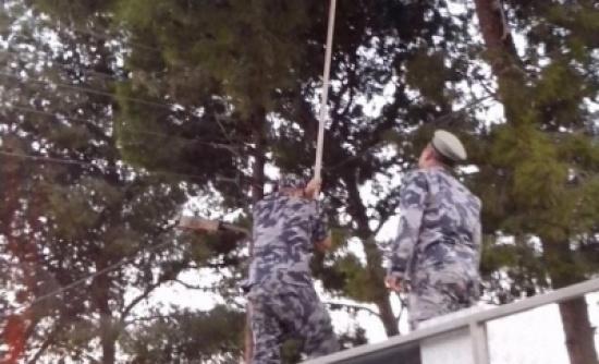 بالصور الدفاع المدني الاردني يستجيب لنداء طفل وينقذ طائره