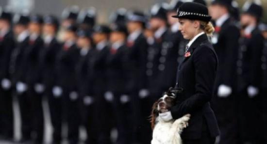 بريطانيا... سيسمح للنساء في الشرطة البكاء وخلع الملابس