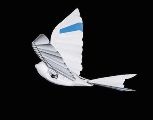 طيور روبوتية ثورية بديلة عن الطائرات المسيرة