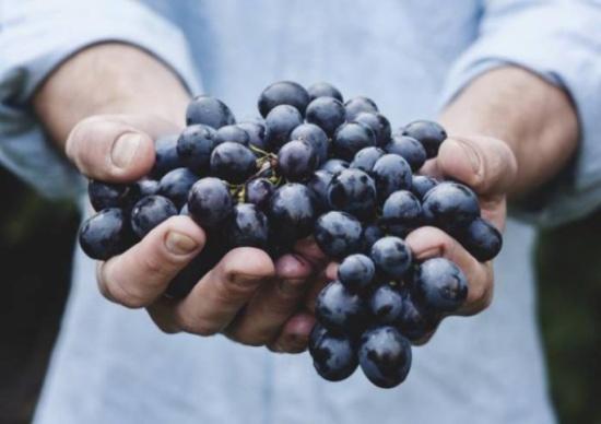 هذه الفاكهة هي اكسير الشباب الدائم .. تناولها كل صباح لتستعيد شبابك